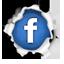 Les Vieilles Charrues sur les médias sociaux Facebook_64x64
