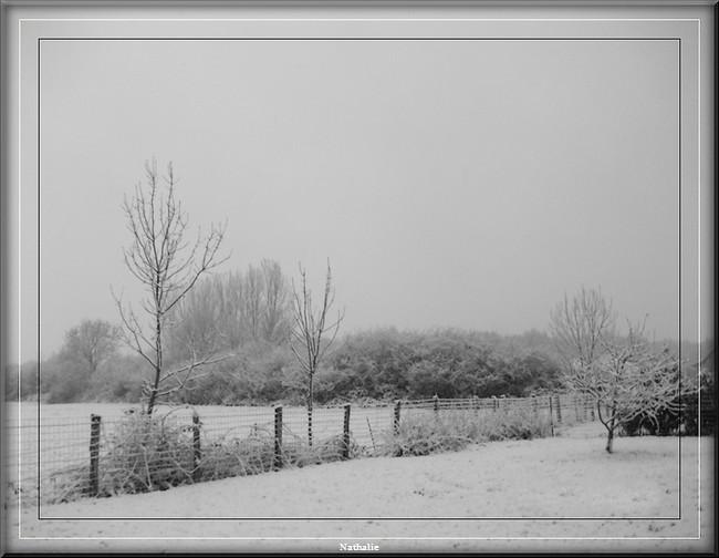 Neige dans le jura